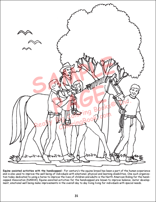 Horse Coloring Book Bulk